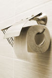 Toilet paper holder Royalty Free Stock Image