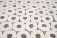 Toilet paper. Lots of toilet paper rolls without background Stock Images