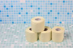 Toilet paper one Stock Image