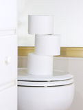 Toilet paper in restroom Stock Photos