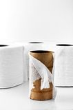 Toilet paper roll stock photo