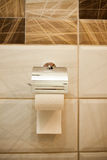 Toilet paper roll hanging in bathroom close up with cream  ceram Royalty Free Stock Photo