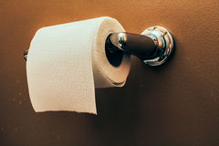 Toilet Paper Roll on Wall 3. Toilet paper roll on wall of rustic looking bathroom Royalty Free Stock Photo