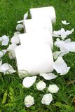 Toilet paper rolls in a the grass stock images