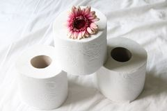 Toilet paper Royalty Free Stock Photography