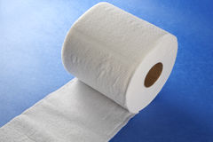 Toilet paper unrolled Royalty Free Stock Image