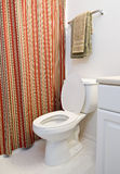 Toilet Revised. A vertical shot of an apartment bathroom concentrating on the toilet Royalty Free Stock Photos