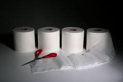 Toilet rolls Royalty Free Stock Photography