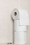Toilet rolls Stock Image