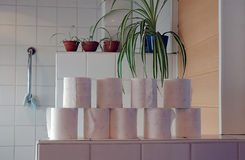 The toilet room. A couple of rolls toilet paper in a toilet room Stock Photography