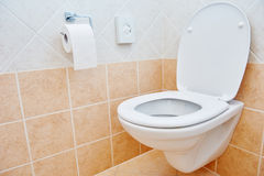 Toilet sanitary sink or bowl and paper Stock Photography