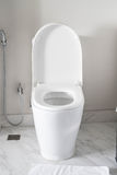 Toilet seat decoration in bathroom interior Stock Photography