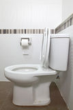 Toilet seat and tissue Stock Photography