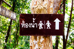 Toilet sign on tree Stock Photo