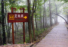 Toilet sign on wooden wall in forest. Toilet sign on wooden wall in the park with mist,China Royalty Free Stock Photo