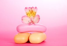 Toilet soap and the flower of an alstroemeria Royalty Free Stock Image