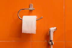 Toilet tissues box wall hanging design with spray hose Royalty Free Stock Photos