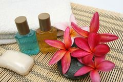 Toiletries set Royalty Free Stock Images