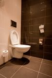 Toilette royaltyfria bilder