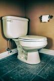 Toilette et papier hygiénique image libre de droits