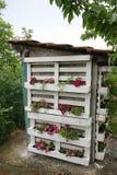 Toilette floreale del villaggio fotografia stock