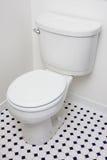 toilette inférieure de flux Image stock