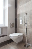 Toilette per gli handicappati Immagine Stock