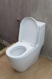 Toilette und Sprüher Fush Stockfotos
