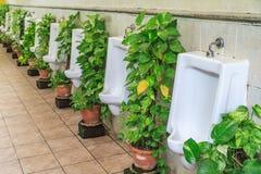 Toiletten für Männer Stockfoto