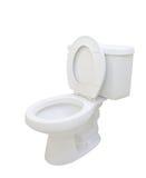 Toiletten-Schüssel Lizenzfreie Stockfotografie