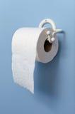 Toilettenpapier auf Halterung stockbild
