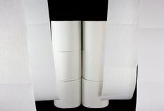 Toilettenpapierfenster lizenzfreie stockbilder
