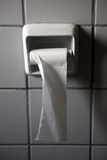 Toilettenpapierrolle Stockfoto