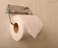 Toilettenrolle und -halterung lizenzfreie stockfotografie