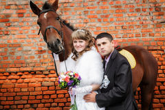 Toilettez et la jeune mariée pendant la promenade contre un cheval brun et un vieux mur de briques Images libres de droits