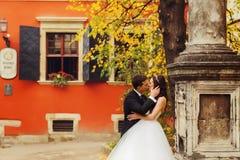 Toilettez le visage du ` s de jeune mariée de prises et embrassez son offre sous le l vert image libre de droits