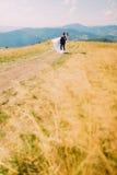 Toilettez tenir le sien taillent l'épouse sur des mains au champ ensoleillé venteux avec Forest Hills éloigné comme fond Photographie stock libre de droits