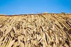 Toit couvert de chaume à la hutte Photo libre de droits