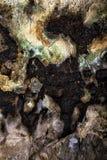 Toit de caverne Images stock