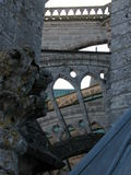 Toit de Chartres Image libre de droits