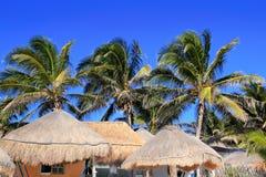 Toit du soleil de palapa de hutte de ciel bleu de palmier de noix de coco Image stock