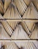 Toit en feuille de palmier Photo libre de droits