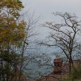 Toit et cheminée de Chambre entourés par des arbres Photographie stock