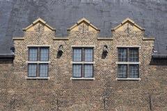 Toit et Windows de château Photo libre de droits
