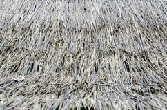 Toit fait de feuilles sèches de l'herbe de cogon Images stock