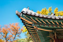 Toit traditionnel coréen de palais de Changgyeonggung avec l'érable d'automne à Séoul, Corée images libres de droits