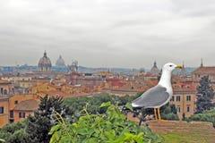 Toits de Rome Photos libres de droits