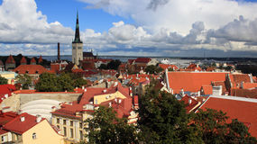 Toits de Tallinn Photographie stock libre de droits