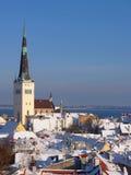 Toits de vieux Tallinn Images libres de droits