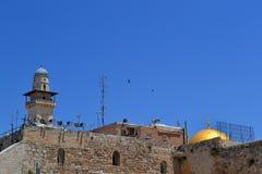 Toits des églises et des minarets de Jérusalem dans la vieille ville sur le fond du ciel bleu avec deux oiseaux montants Image libre de droits